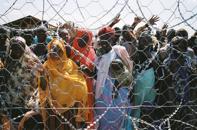 rifugiati dietro filo spinato