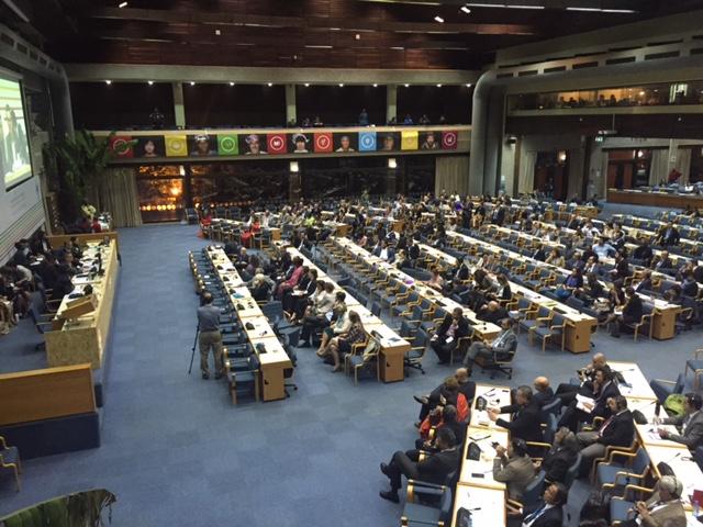 L'assemblea dell'UNEA