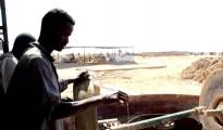 estrazione oro in Sudan