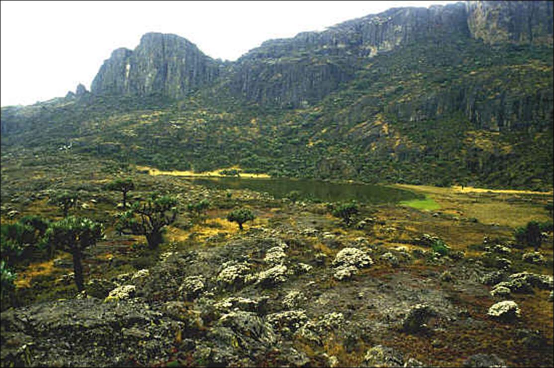 Una suggestiva immagine de Monte Elgon ai cui piedi si stende la Mau Forest, habitat della comunità Ogiek