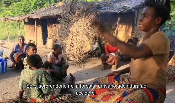 I pigmei hanno paura di essere uccisi dalle guardie anti-bracconaggio se trovati nella foresta (fotogramma da video Survival)