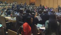 Abidjan, Costa d'Avorio Summit UA-UE