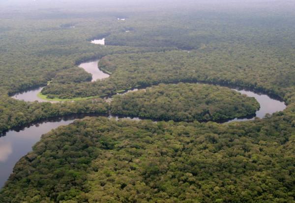 UNESCO, Parco nazionale Salonga, Congo-K