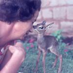 Daphne Sheldrick. ©The David Sheldrick Wildlife Trust