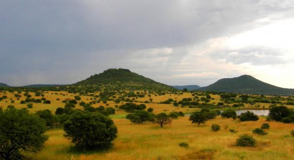Uno dei molti terreni abbandonati incolti in Africa