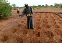Il metodo Zaï contro la desertificazione nel Sahel